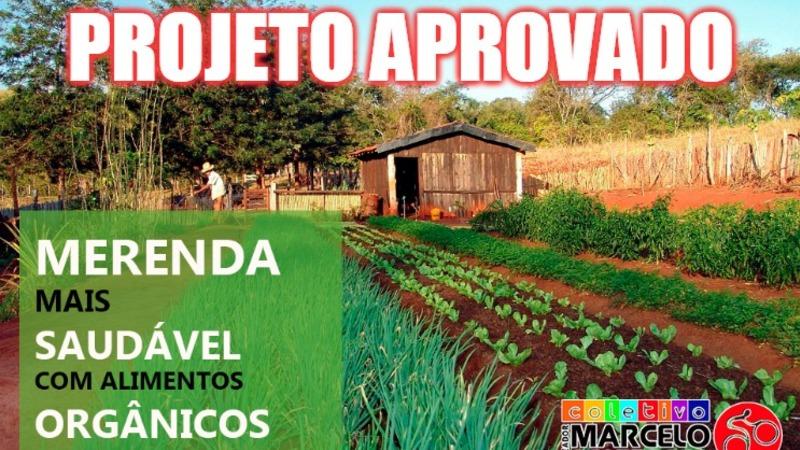 Organicos merenda aprovado